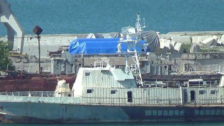 Bao cam van My chua tan, EU do bo trung phat Nga ve Crimea - Anh 1