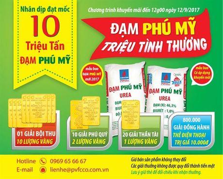 15 nong dan dau tien trung vang tu Dam Phu My - Anh 2
