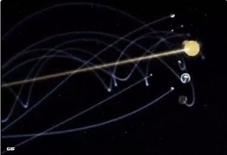 NASA met moi di tim trai bong cua Courtois - Anh 7