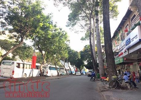 TP Ho Chi Minh cam xe nhieu tuyen duong phuc vu Le thuong co ASEAN - Anh 2