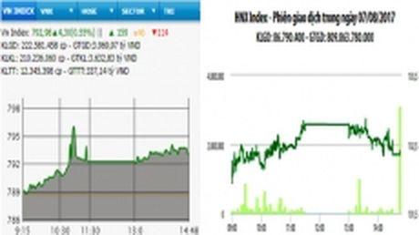 Chung khoan vung da tang, VN-Index vuot moc 790 diem - Anh 1