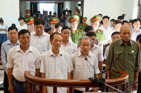 Vu cap dat sai o Dong Tam: De nghi an cao nhat 7-8 nam tu - Anh 1