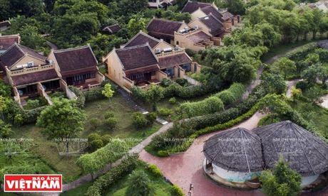 Phim truong ''Kong: Skull island'' - diem nhan cua Di san Trang An - Anh 13