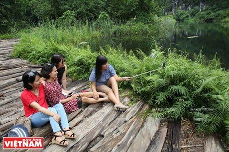 Phim truong ''Kong: Skull island'' - diem nhan cua Di san Trang An - Anh 7