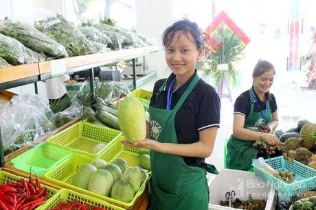 Gian hang nong san sach Xanh Mart Vinh 'hut' khach - Anh 11