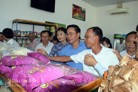 Gian hang nong san sach Xanh Mart Vinh 'hut' khach - Anh 12