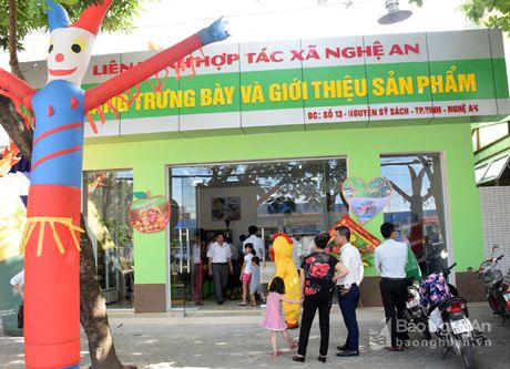 Gian hang nong san sach Xanh Mart Vinh 'hut' khach - Anh 13