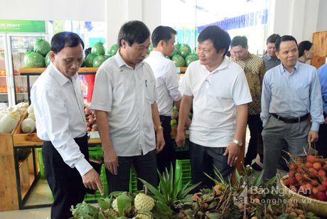 Gian hang nong san sach Xanh Mart Vinh 'hut' khach - Anh 1