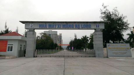 Thuc xu ly no tai Xi mang Ha Long - Anh 1