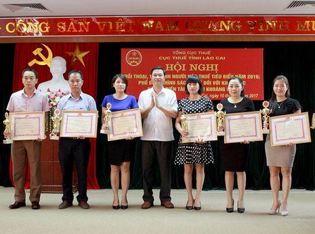 Lao Cai: Pho bien chinh sach thue voi khai thac, che bien khoang san cho hon 100 DN - Anh 3