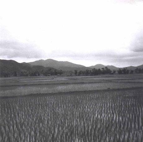 Binh Dinh nam 1968 trong anh cua linh cong binh My - Anh 5