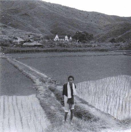 Binh Dinh nam 1968 trong anh cua linh cong binh My - Anh 9