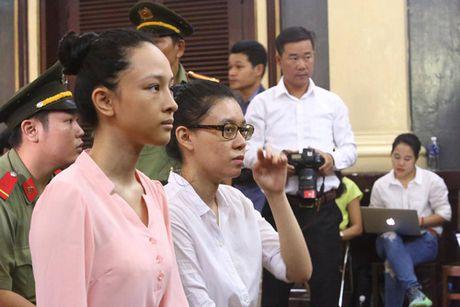 Tam dinh chi dieu tra vu an Phuong Nga lua dao chiem doat tai san - Anh 5