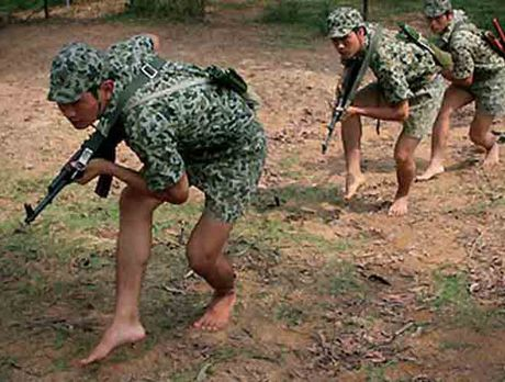 Bao My ca ngoi ky nang tac chien dinh cao cua dac cong Viet Nam - Anh 4