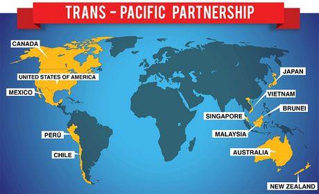 TPP se ton tai duoi hinh thuc nao? - Anh 1