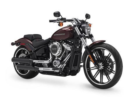 Harley-Davidson gioi thieu dong Softail va 8 mau xe hoan toan moi - Anh 10