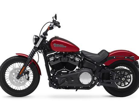 Harley-Davidson gioi thieu dong Softail va 8 mau xe hoan toan moi - Anh 11