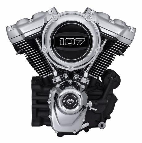 Harley-Davidson gioi thieu dong Softail va 8 mau xe hoan toan moi - Anh 2