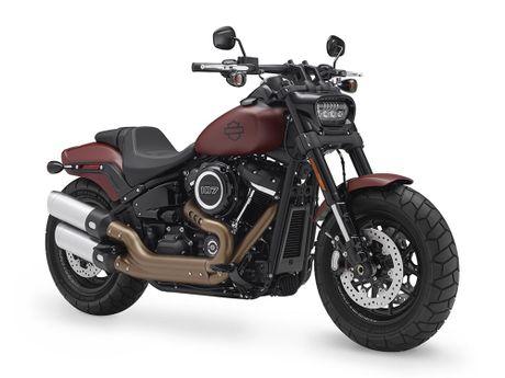 Harley-Davidson gioi thieu dong Softail va 8 mau xe hoan toan moi - Anh 4