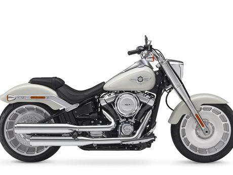 Harley-Davidson gioi thieu dong Softail va 8 mau xe hoan toan moi - Anh 5