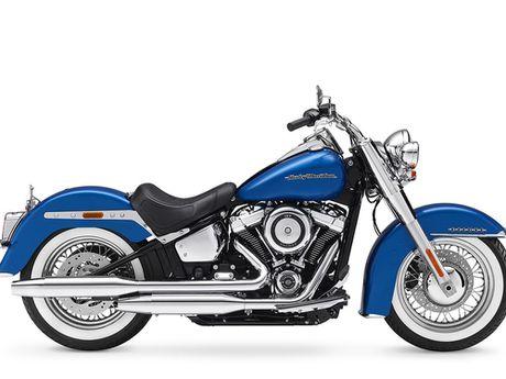 Harley-Davidson gioi thieu dong Softail va 8 mau xe hoan toan moi - Anh 9