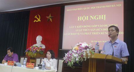 Can thiet dua Nghi quyet 30 vao du thao Luat Bao ve va Phat trien rung (sua doi) - Anh 1