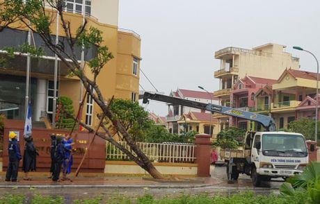 Chum anh: Quang Binh tan hoang sau 'sieu bao' - Anh 3