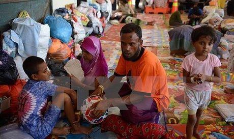 Lien Hop quoc keu goi cham dut bao luc voi nguoi Rohingya - Anh 1