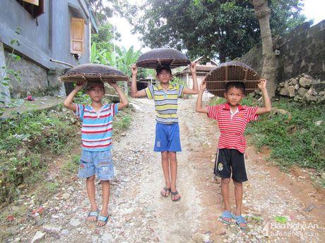 'Doc chieu' san ca suoi cua tre em vung cao Nghe An - Anh 2