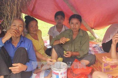 Vao vung ron lu Thach Dinh, Thanh Hoa - Anh 1