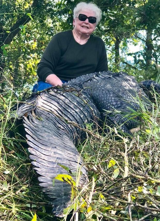 Cụ bà bắn chết cá sấu dài 3,6 mét vì dám ăn trộm thú cưng của gia đình Ảnh 1