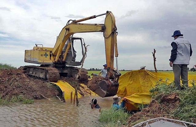 Mực nước sông Cửu Long đang lên, nguy cơ ngập lụt vùng trũng thấp Ảnh 1
