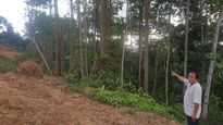 Điện Biên: Đền bù 1m2 đất chưa bằng bát phở