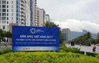Đà Nẵng: Gần 800 tình nguyện viên ra quân phục vụ APEC