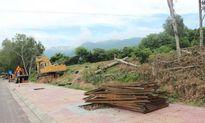 Cam Ranh (Khánh Hòa): Vì sao một dự án nguy cơ 'chết yểu'?