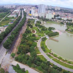 Toàn cảnh gần 1.300 cây xanh ở Hà Nội trước giờ di chuyển, chặt hạ