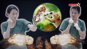 Cười nghiêng ngả với cách đánh boxing như 'mèo cào' của Nhung Gumiho