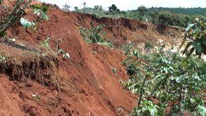 Sạt lở đất lan nhanh, hàng chục héc ta cà phê bị vùi lấp