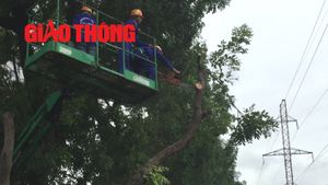 Bắt đầu chặt hạ, di dời hàng cây trên đường Phạm Văn Đồng