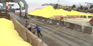 Xử lý 40 nghìn tấn lưu huỳnh tại cảng Hoàng Diệu, Hải Phòng