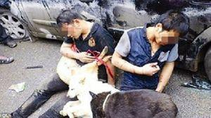 Khởi tố vụ án người dân đánh đến chế thanh niên trộm 5 con chó ở Hà Nội