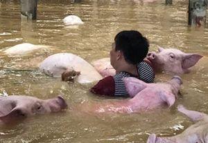 Thanh Hóa thiệt hại gần 3.000 tỷ đồng do mưa lũ