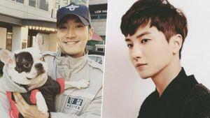 Phát hiện chó của Siwon từng có tiền sử cắn cả Leeteuk, K-net phẫn nộ: 'Anh ấy có thể đã chết nếu hệ miễn dịch yếu'