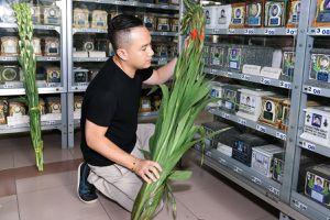 Ca sĩ Minh Thuận đã được yên nghỉ tại nhà thờ An Lạc