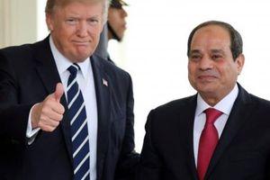 Nghị sỹ Ai Cập ủng hộ việc thành lập 'NATO Ả Rập'