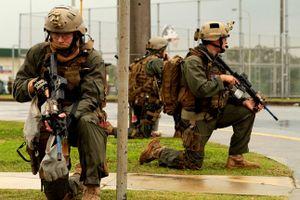 Điều ít biết về lực lượng đặc biệt Lục quân Mỹ