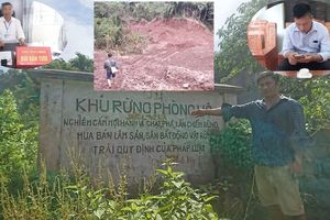 Doanh nghiệp tư nhân tàn phá rừng đầu nguồn trồng cam: Cán bộ đổ cho dân, huyện nói không biết