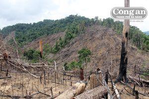 Về bài viết: 'Ai đứng sau vụ phá rừng phòng hộ Tiên Lãnh': Lộ danh sách những cán bộ đứng sau?