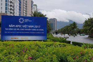Tuần lễ Cấp cao APEC 2017 - 'vận hội vàng' cho du lịch Đà Nẵng