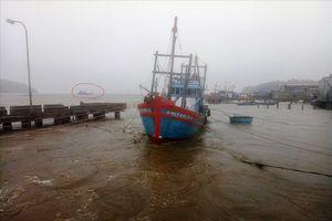 2 tàu cá của ngư dân Quảng Ngãi bị nước lũ nhấn chìm ngay cửa cảng